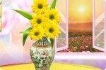 Wazon i Kwiaty